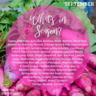September Seasonal Recipes